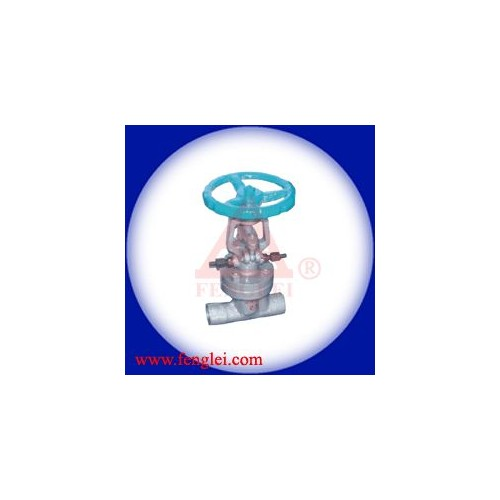 风雷厂价直供DSJ61H 截止阀-- 上海风雷自动化仪表有限公司