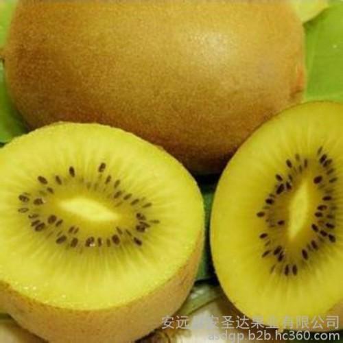 供应成都猕猴桃 安圣达金果猕猴桃 黄心猕猴桃 猕猴桃等水果-- 安远县安圣达果业有限公司