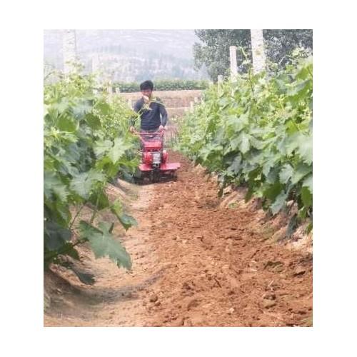 厂家直销农用微耕机机械设备 多功能四驱田园管理机-- 曲阜市德鑫机械设备有限公司