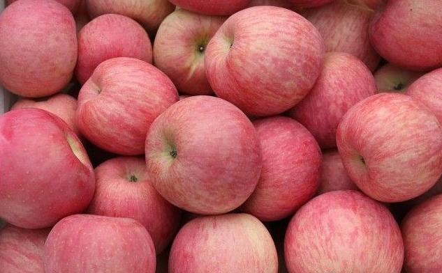 山东红富士苹果价格山东苹果价格-- 山东红富士苹果产地