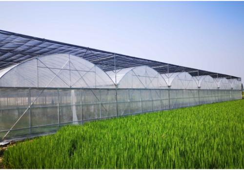 河南奥农苑温室工程有限公司